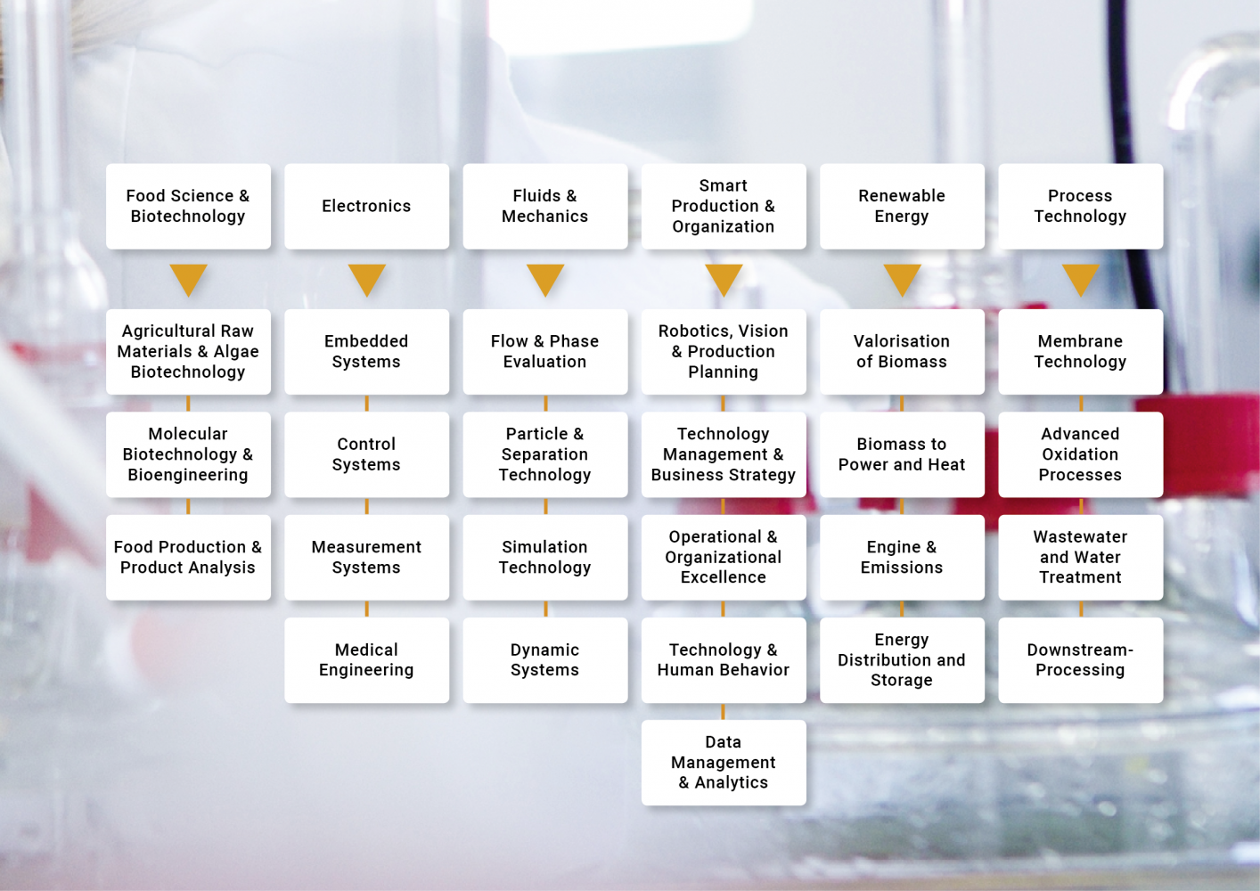 Research areas displayed in a table.